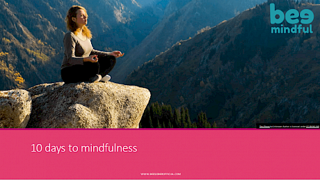Bee Mindful Course - 10 days to Mindfulness